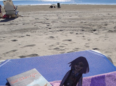 Flat Ruthie at the beach