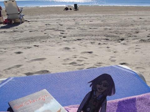 Flat Ruthie at the beach