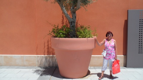 I was looking for a large flower pot but wasn't able to bring this one home.