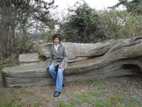 A comfy bench at Wiffin Spit