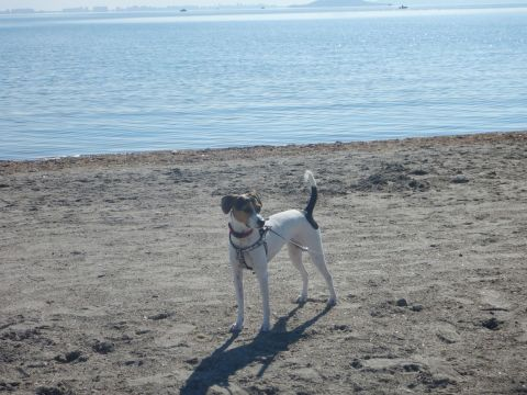 She enjoys going to the beach