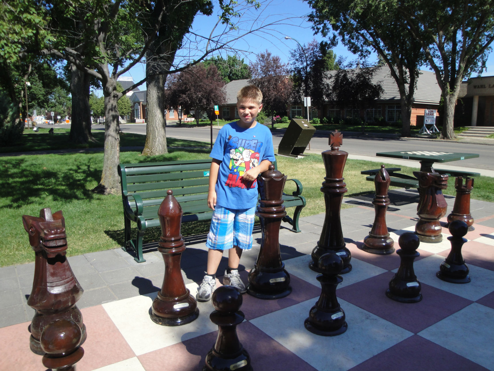 Giantchess set